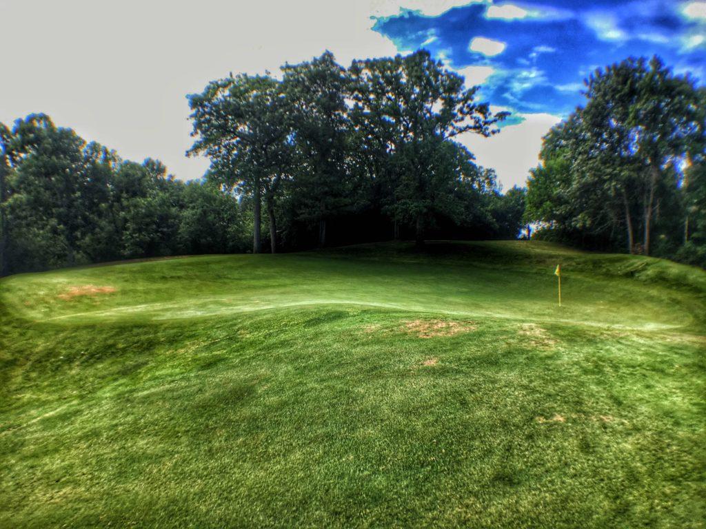 Eagle Springs Golf Resort - Hole 1 - Green